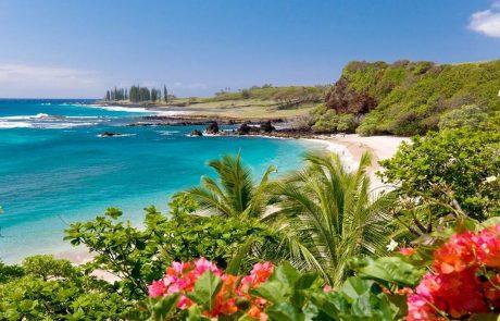 Hannah Cote - Travel Agent - Hawaii Vacations
